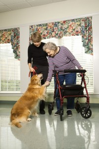 elderly woman petting dog with daughter